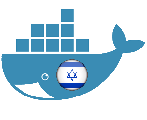 Docker Radarr Sonarr